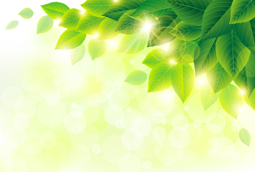 500x338 Green Leaf With Halation Background Vector 02 Free Download
