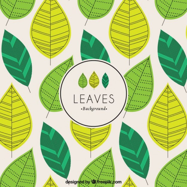 626x626 Green Leaves Background Vector Free Download