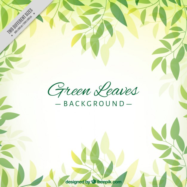 626x626 Hand Drawn Cute Green Leaves Background Vector Free Download