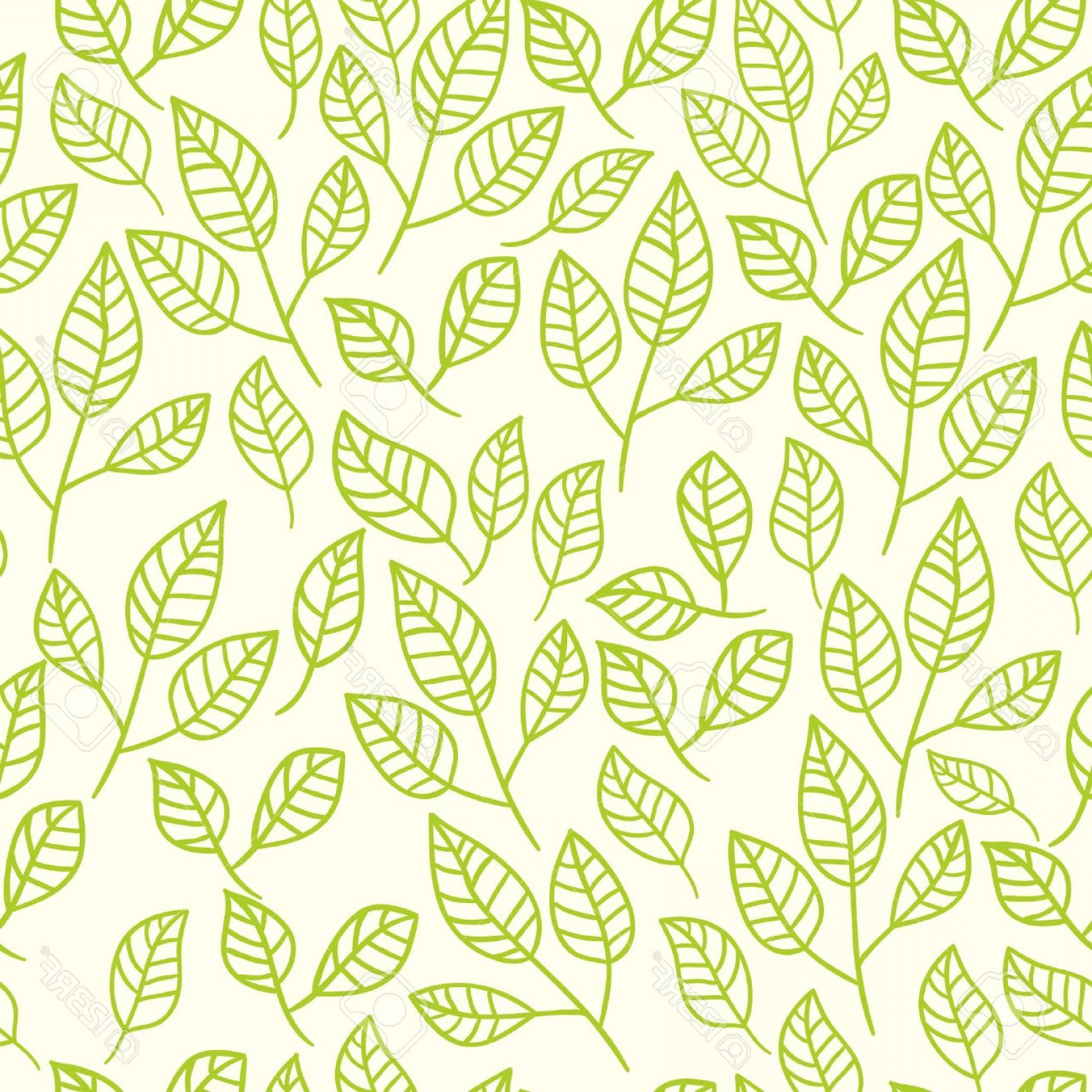 1560x1560 Cute Leaf Background Vector Geekchicpro