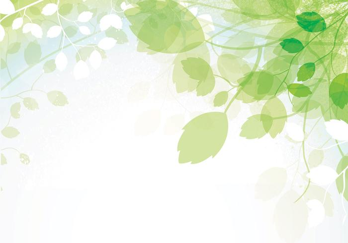 700x490 Spring Leaves Vector Background