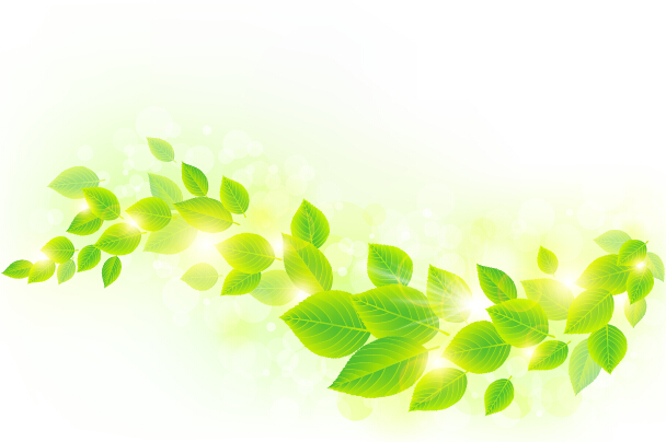 608x404 Spring Sunlight With Green Leaves Background Vector 04 Free Download