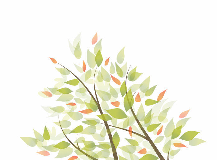 697x513 Tree Branches Leaves Background