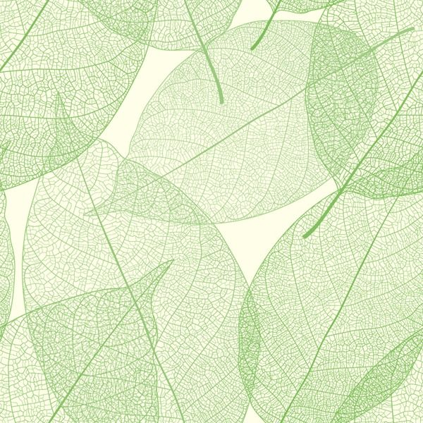 600x600 Elegant Green Leaves Background Vector Graphics Graphic