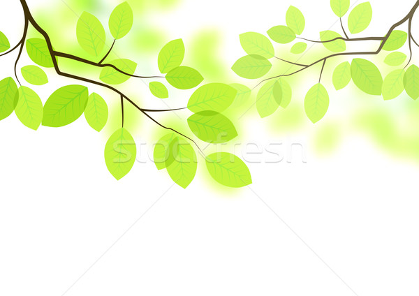 600x424 Vector Leaves Background Vector Illustration James Thew