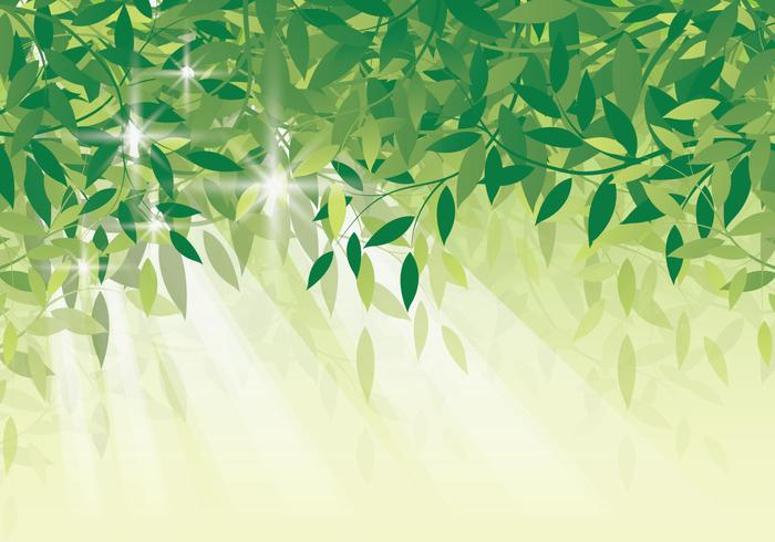 700x490 Fresh Green Leaf Background