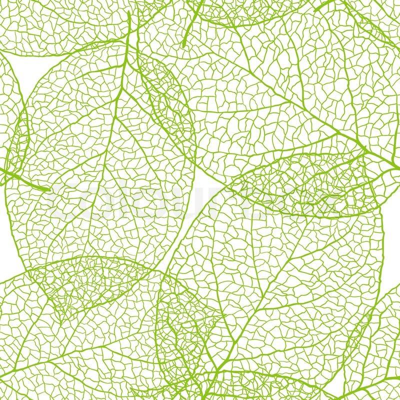 800x800 Fresh Green Leaves Background