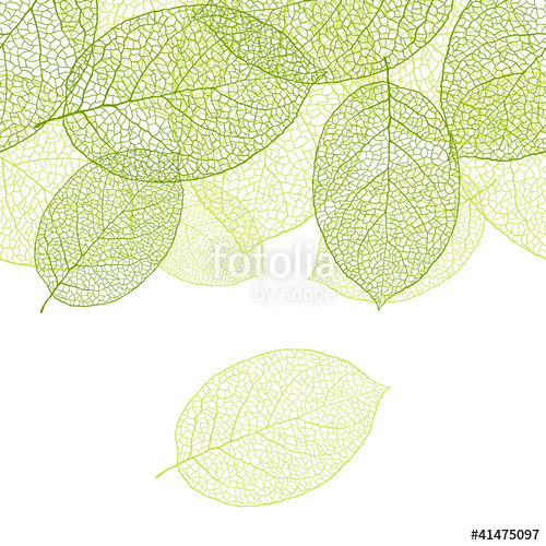 500x500 Fresh Green Leaves Background