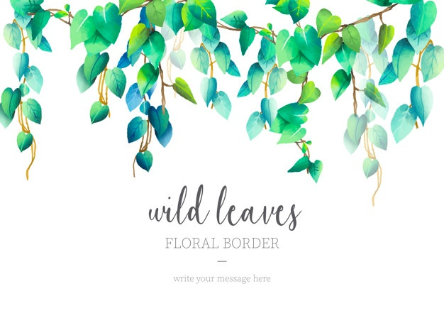 626x469 Green Leaf Border Vectors, Photos And Psd Files Free Download