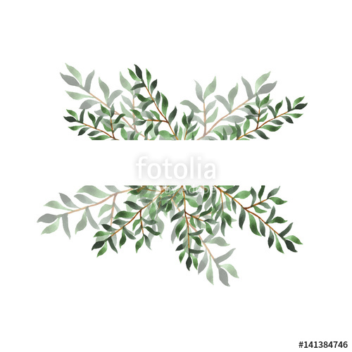 500x500 Abstract Green Leaf Border On White Background. Design For Wedding