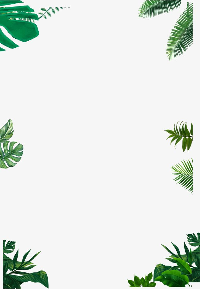 650x939 Simple Border,green,vector Border,leaf Border,small Fresh Style