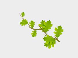 270x200 Free Leaf Vector Graphics