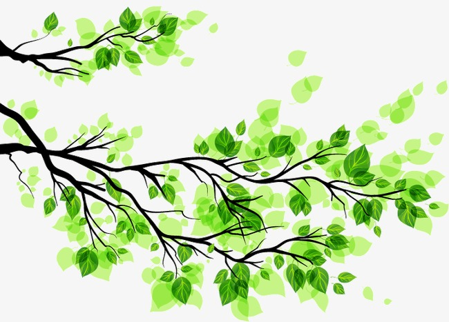 650x467 Green Leaves Branch Vector, Green Vector, Branch Vector, Leaves