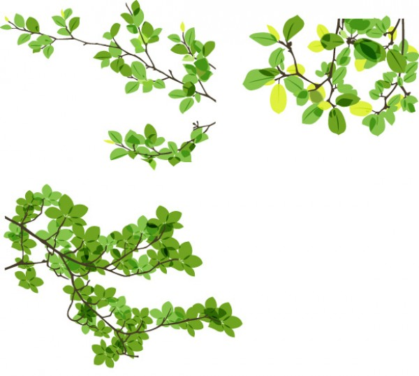 600x538 Green Leaves Vector Branches