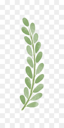 260x520 Olive Branch Png, Vectors, Psd, And Clipart For Free Download