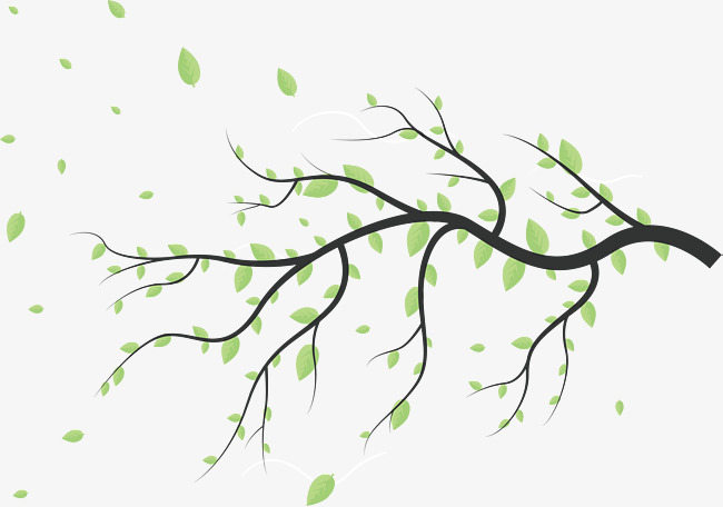 650x456 The Falling Leaves, Vector Png, Branch, Leaf Png And Vector For