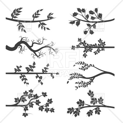 400x400 Tree Branches With Leaves