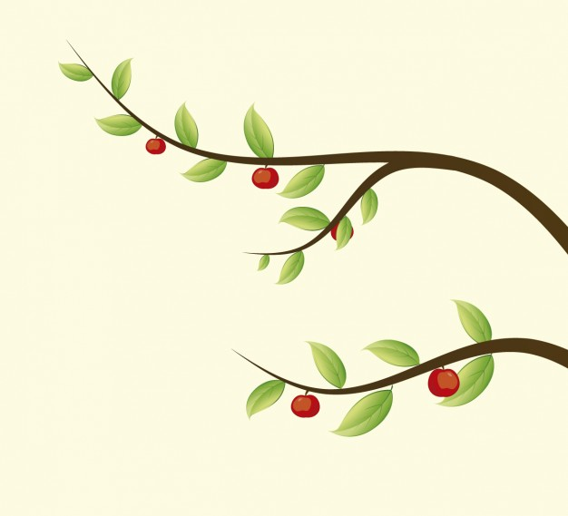 626x569 Branches Vectors, Photos And Psd Files Free Download
