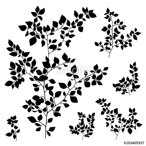 500x500 Branches Leaves Silhouette Set Stock Image And Royalty Free