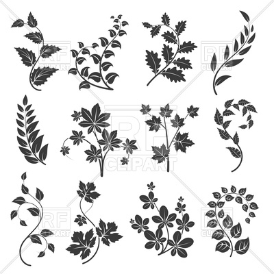 400x400 Curly Branches Silhouettes With Leaves Vector Image Vector