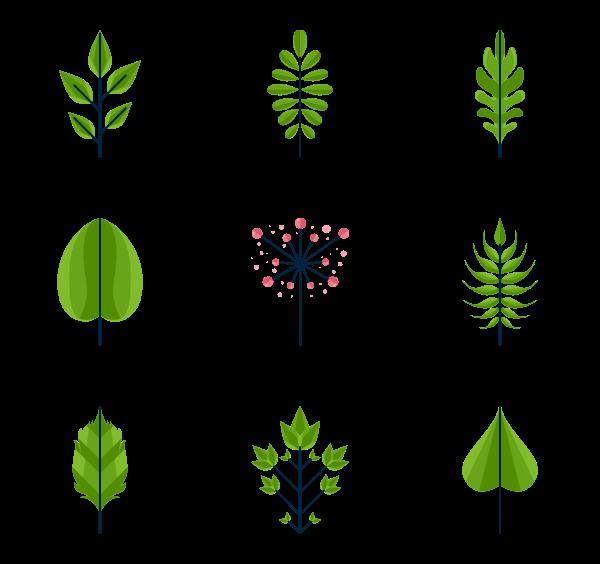 600x564 Leaf Icons