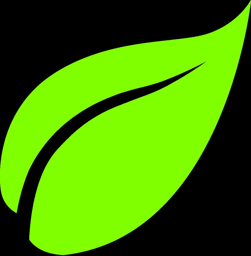 1003x1024 Leaf Icons