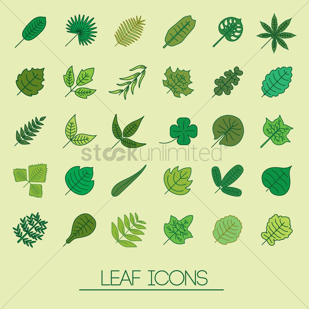 1300x1300 Leaf Icon Vector Image