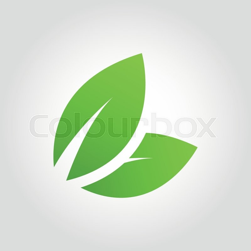 800x800 Vector Green Eco Leaf Icon On Grey Bacground. Flat Leaves Icon