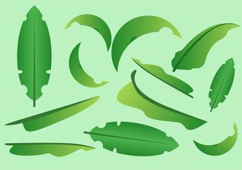 352x247 Free Banana Leaf Vector Illustration Free Vector Download 339397