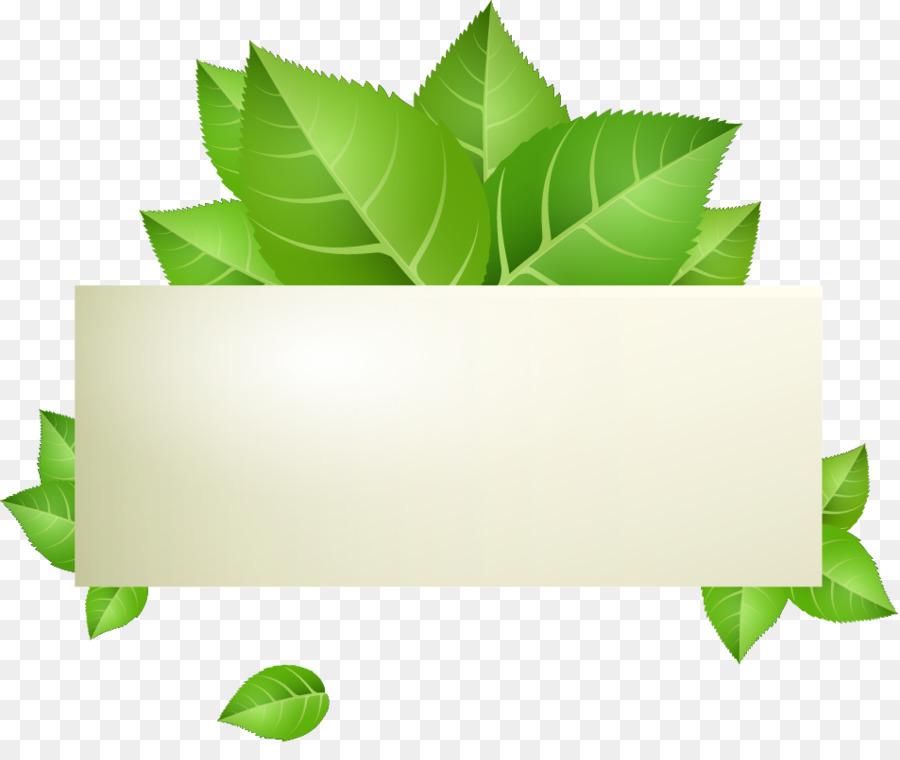900x760 Green Banner Stock.xchng Illustration