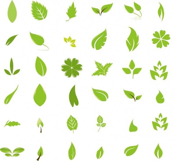 600x556 Green Leaf Design Elements Free Vector In Encapsulated Postscript