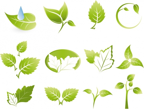 600x455 Green Leaf Icons Free Vector In Adobe Illustrator Ai ( .ai
