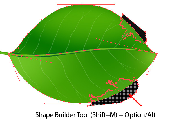 600x436 How To Create Realistic Vector Leaves In Illustrator
