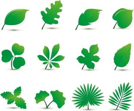 443x368 Leaf Free Vector Download (4,011 Free Vector) For Commercial Use