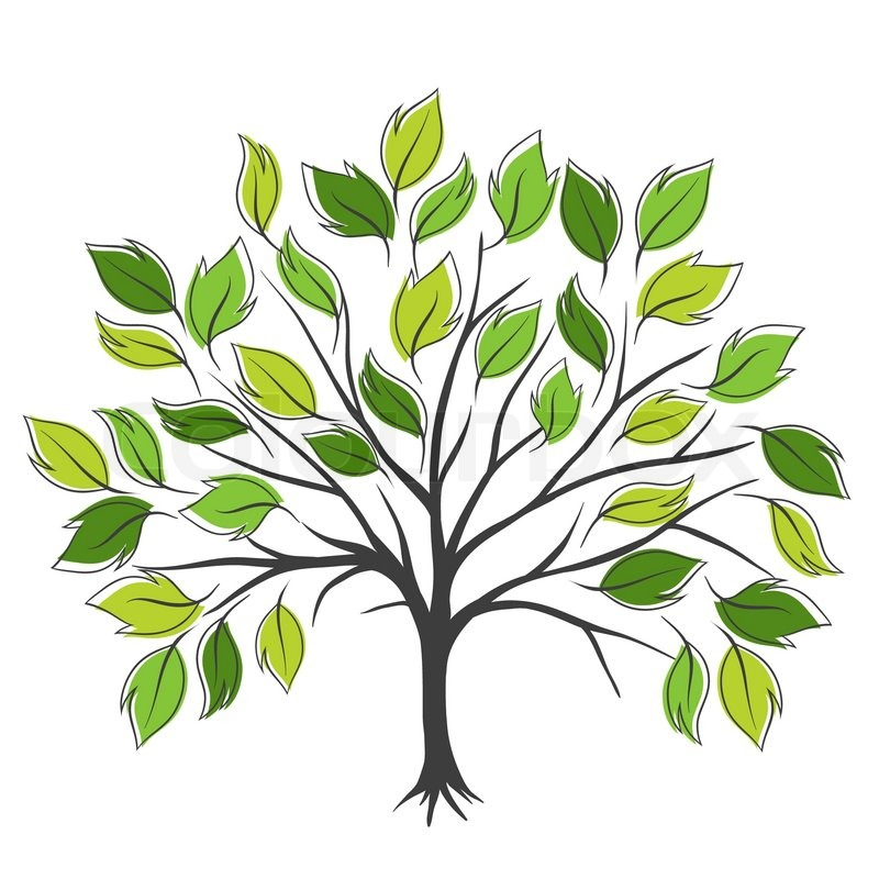 800x800 Symbolic Tree With Single Leaves Vector Illustration Stock
