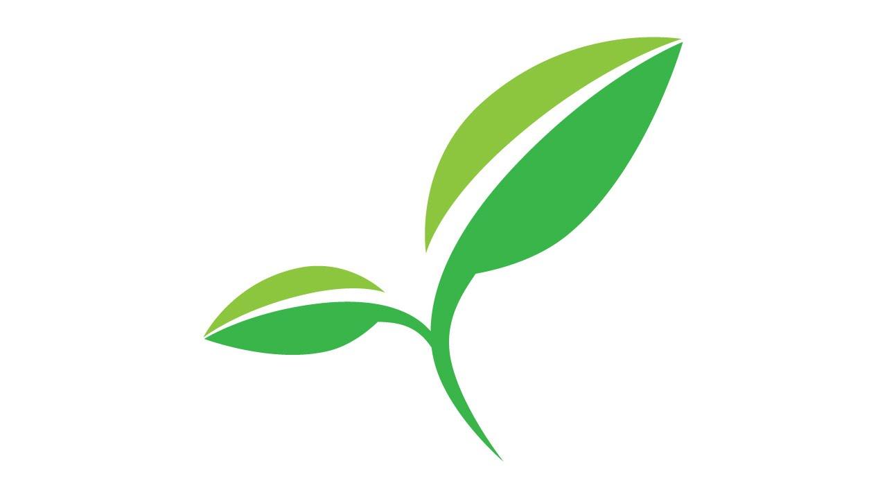 1280x720 Tutorial Illustrator How To Make Leaf