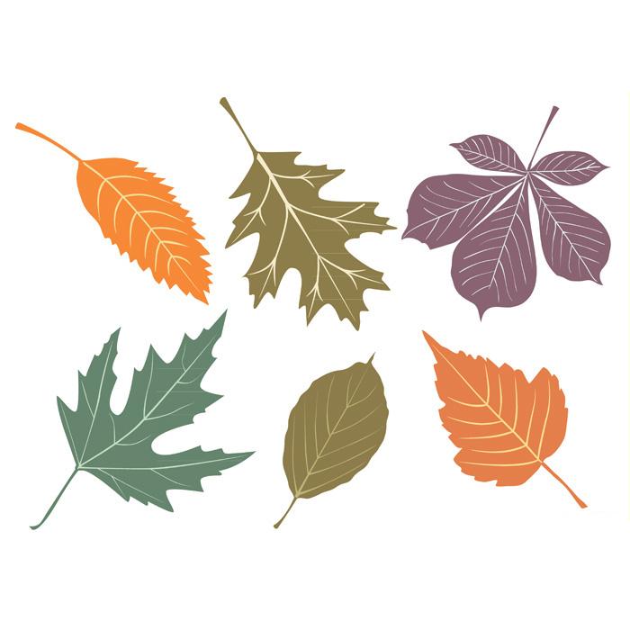 700x700 Bytedust Lab Vector Amp Design This Free Vector Autumn Leaves Set