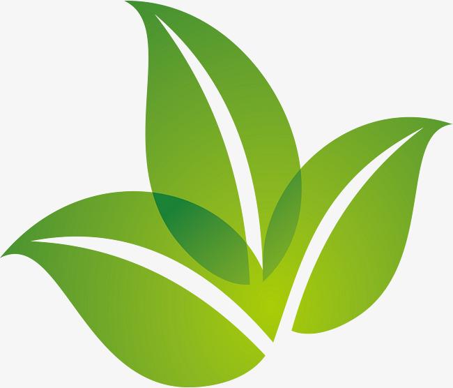 650x556 Spring Green Leaf Logo Design, Spring, Green Leaves, Green Png And