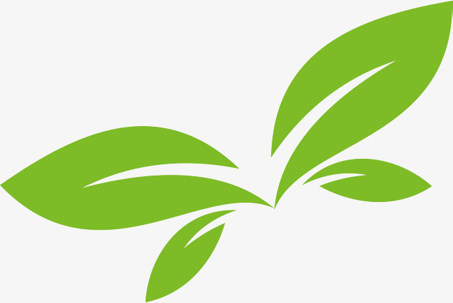 650x435 Green Leaf Vector Logo Design, Green Leaves, Green, Spring Png And
