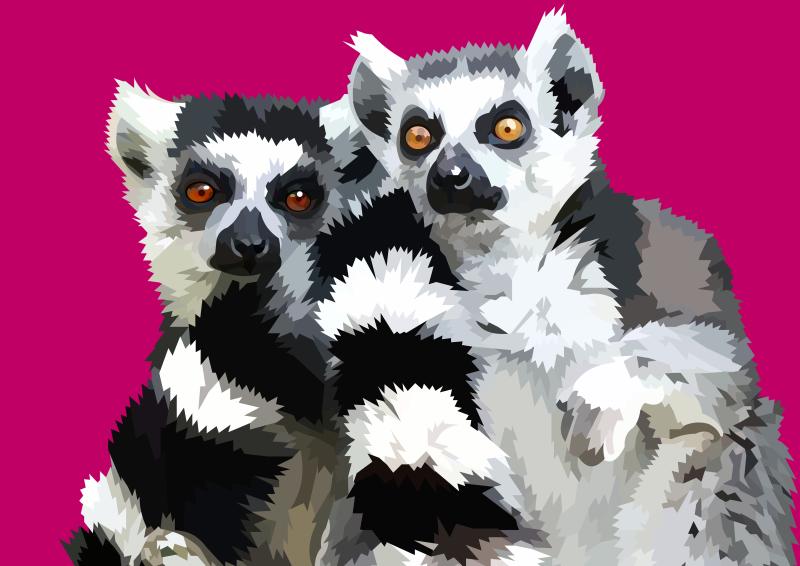 800x566 Ring Tailed Lemur Vector By Elviranl