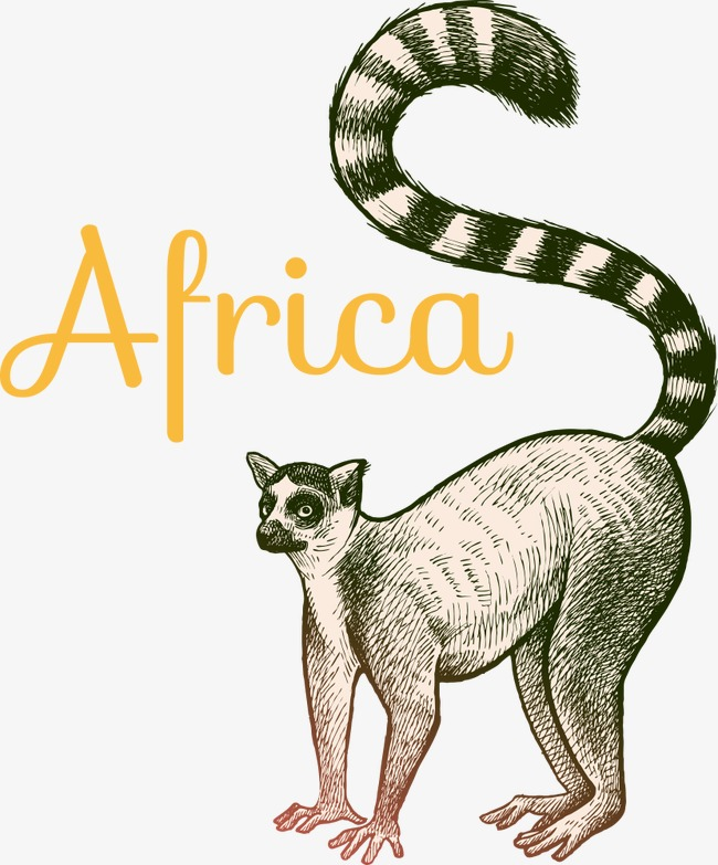 650x783 Vector Cartoon Ring Tailed Lemur, Cartoon Ring Tailed Lemur, Ring