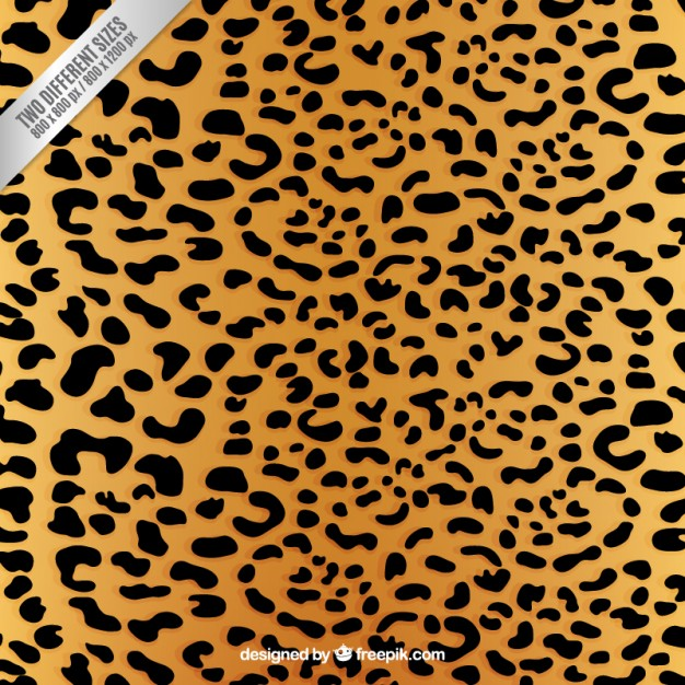 626x626 Leopard Print Background Vector Free Download