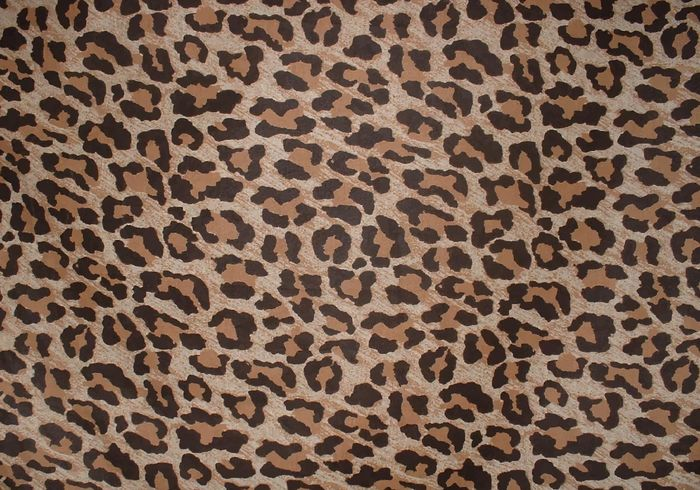 700x490 Free Leopard Print Background Vector 117001