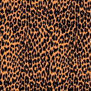 180x180 Free Leopard Print Clipart And Vector Graphics