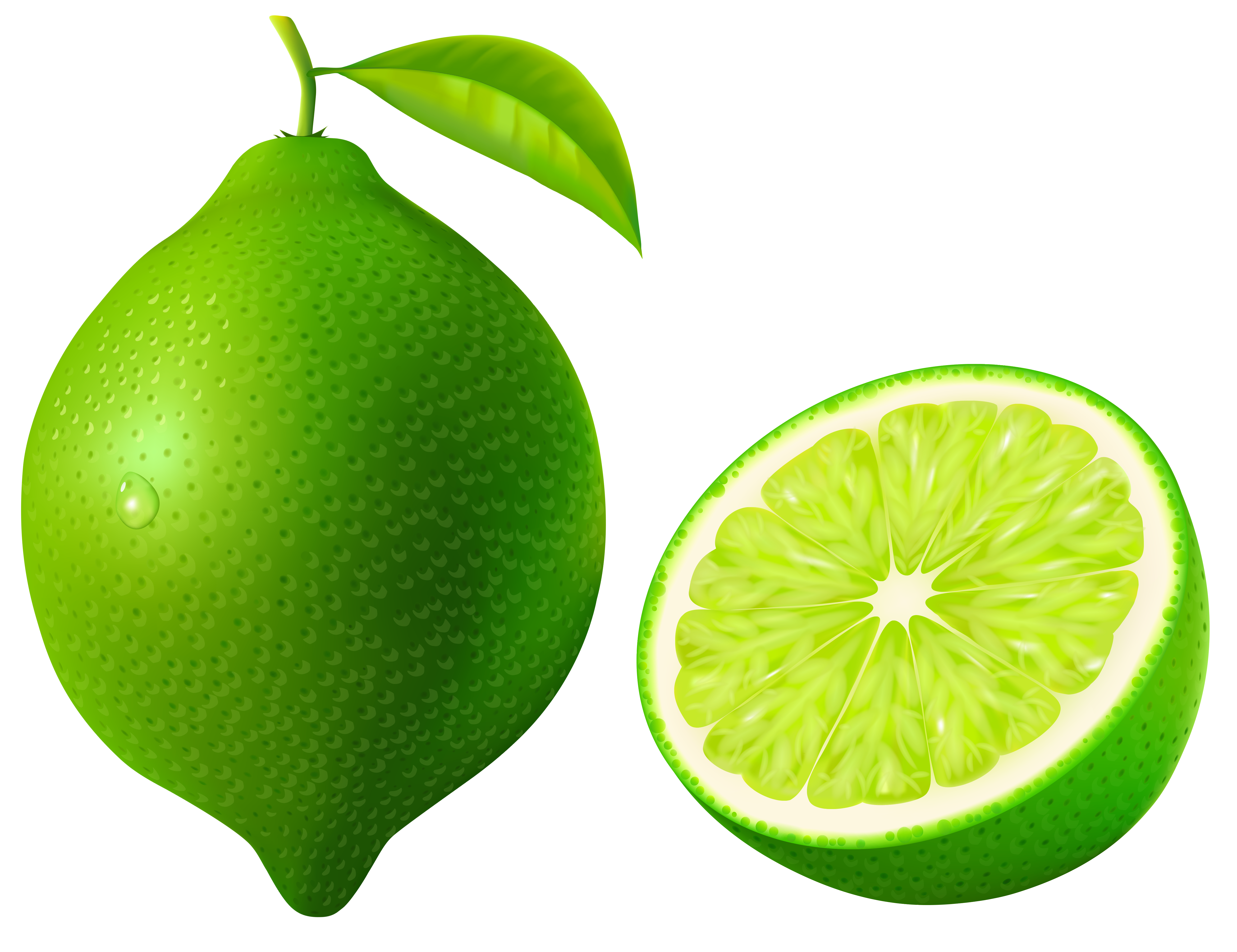 5218x4015 Green Lime Png Vector Clipart Imageu200b Gallery Yopriceville