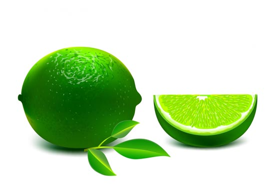 550x375 Green Lime And Half Vector