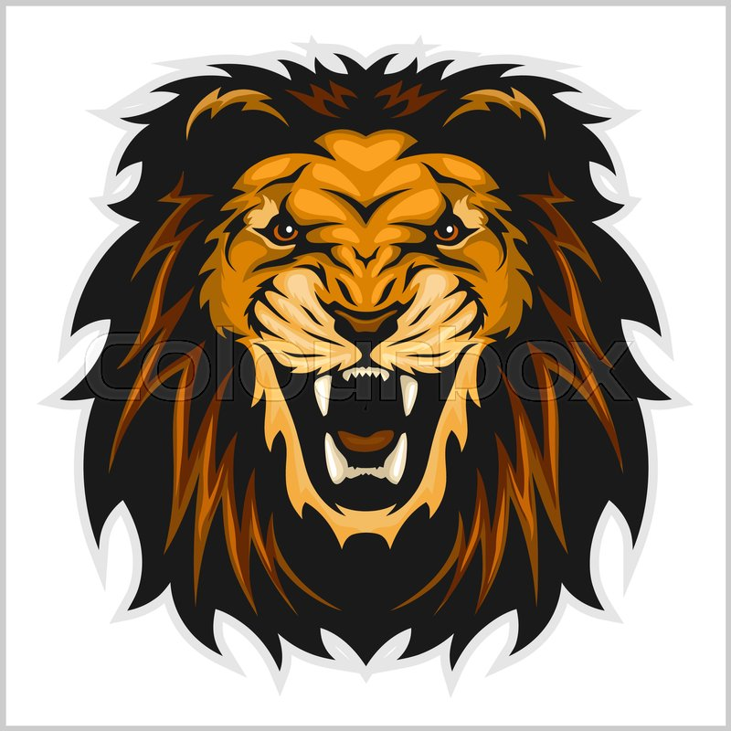 800x800 Lion Head Vector Illustration On White Background Stock Vector