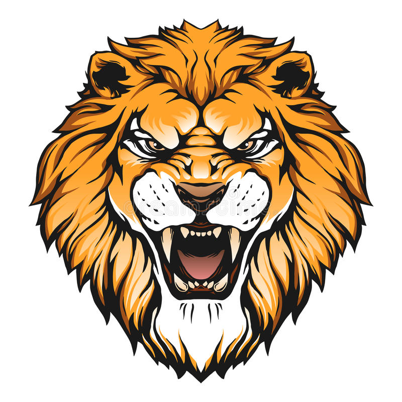 800x800 Lion Face Vector Lion Head Illustration Stock Vector Illustration