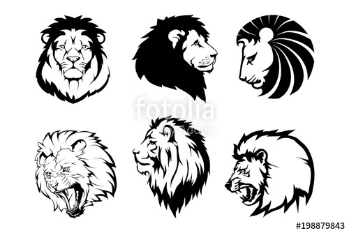 500x334 Lion Logo.vector Animal Lion.king Lion Isolated On White