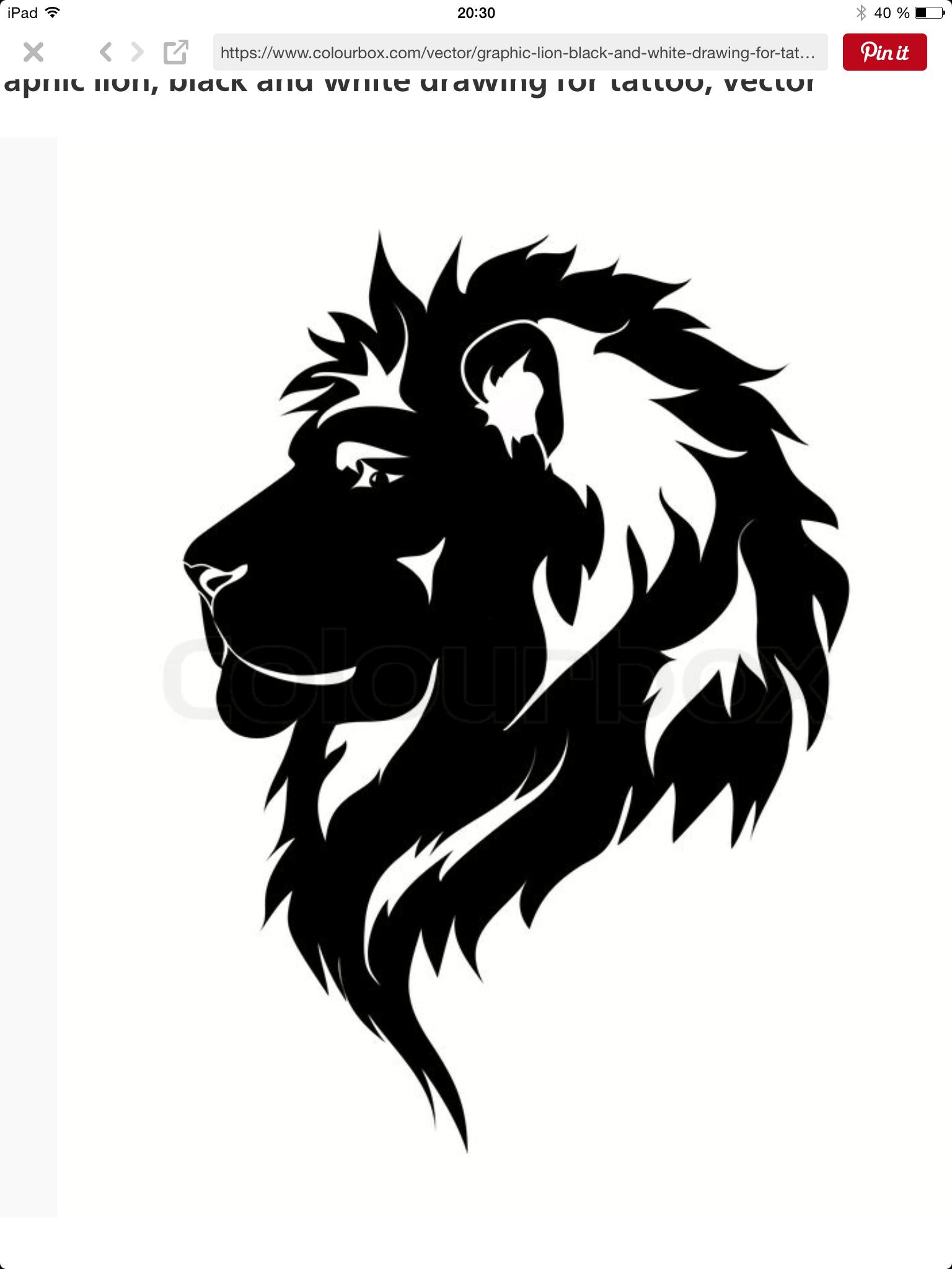1536x2048 Pin By Galina Bozo On Bez Lions, Tattoo And Tatting